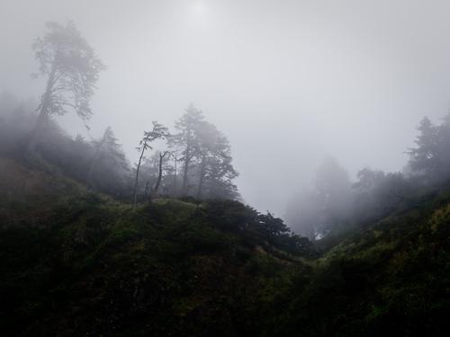 Blog_photo-187