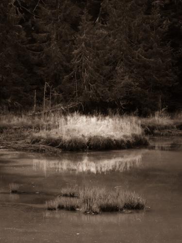 Photo_blog-313