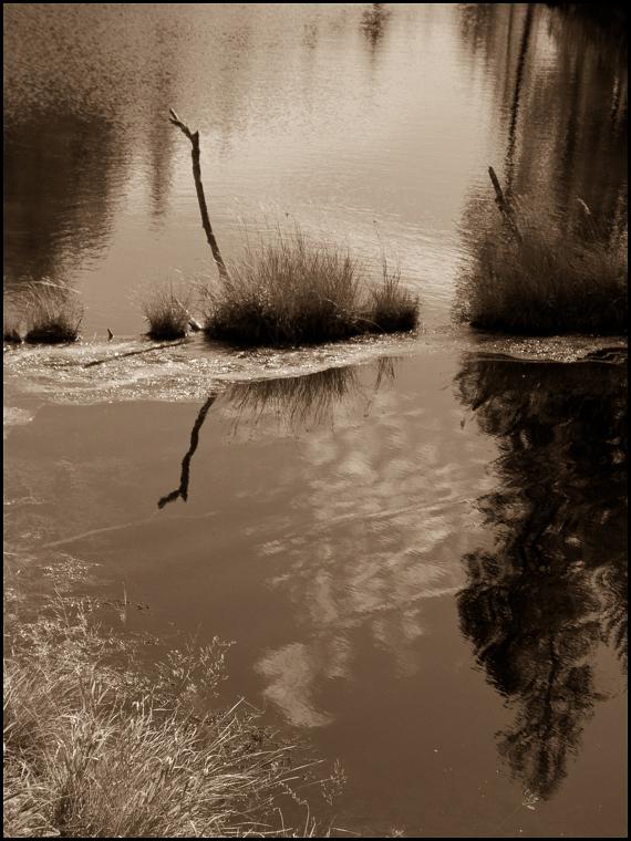 20160522 blog river, eastern washington