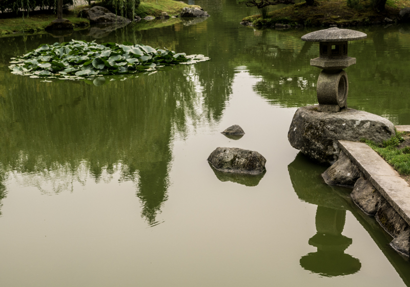 20170907 blog Japanese Garden