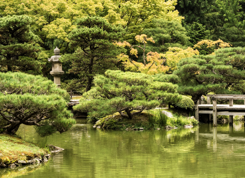 20170907 blog Japanese Garden4