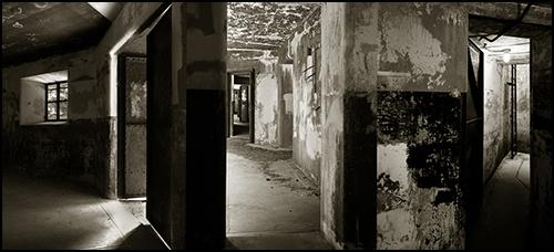 Photo_blog-501