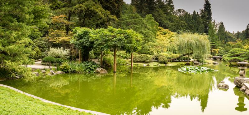 20171203 blog japanese garden pano
