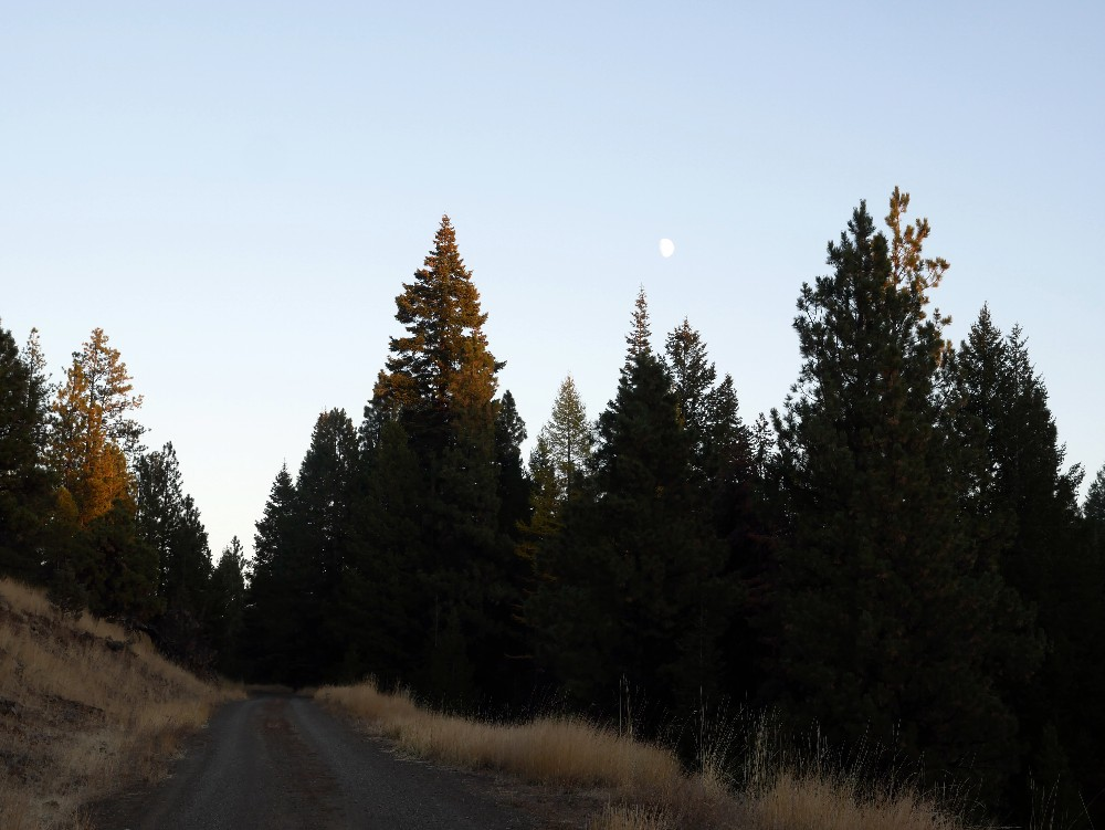 20181019_moonrise black butte