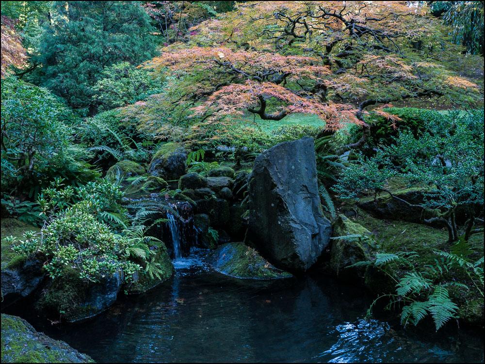 20181022 blog Japanese Garden