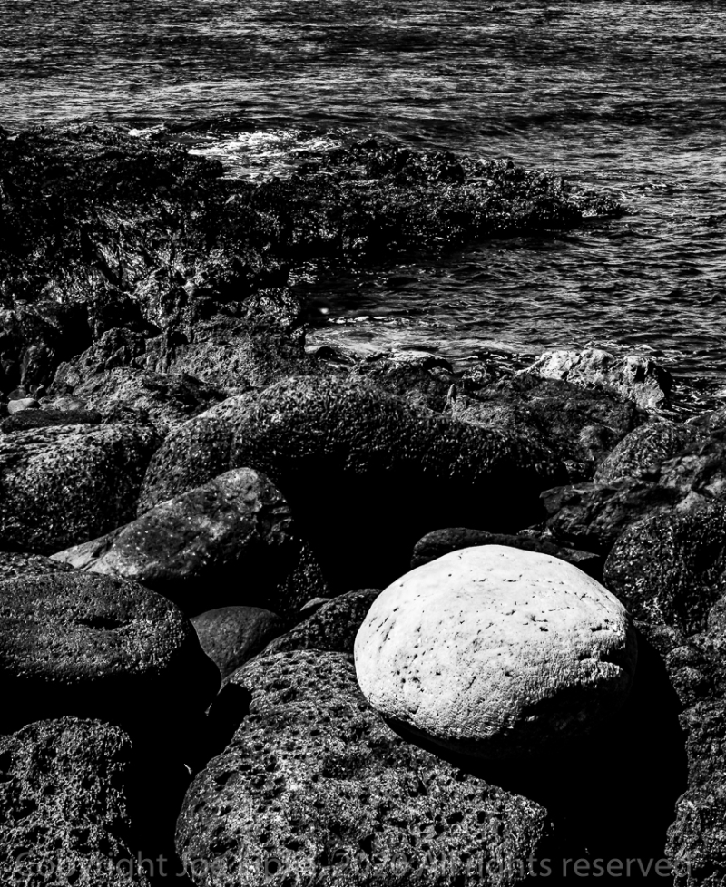 Daily_photograph_0127